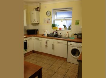 EasyRoommate UK - Nice Clean Single Room Very Clean House Near Town, Ashford - £398 pcm