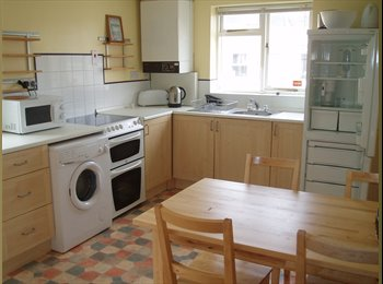 EasyRoommate UK - Lovely STUDENT 3 bed flat, close to university. Available September, Plymouth - £325 pcm