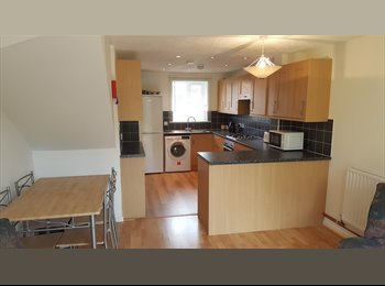 EasyRoommate UK - New Professional House Share, Bedford - £450 pcm