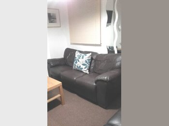 EasyRoommate UK - TS1 Room in a Student House Share, Middlesbrough - £281 pcm