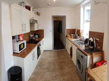 EasyRoommate UK - Perfectly located student house with 4 bedrooms 15 minutes from university, Botanic - £303 pcm