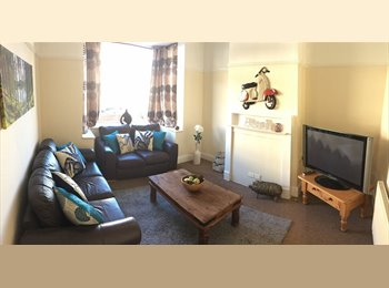 EasyRoommate UK - Newly Refurbished 4 Bed Professional House, Horfield - £495 pcm