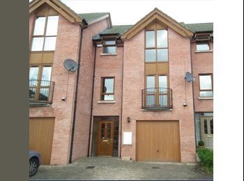 EasyRoommate UK - Fantastic double in a fully refurbished 3 bedroom House, Belfast - £300 pcm