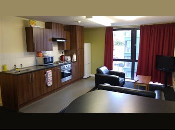 EasyRoommate UK - DIGS The Pinnacles (Sheffield) 3 Bed Student Flat , Park Hill - £440 pcm