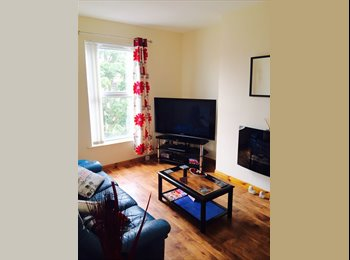 EasyRoommate UK - Double room in Apartment , Belfast - £375 pcm