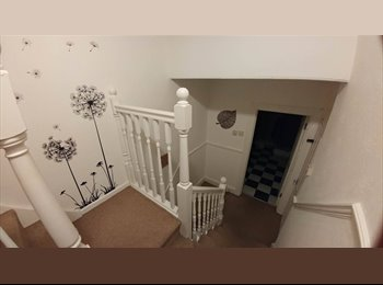 EasyRoommate UK - Room to rent in 4 bedroom house , Plymouth - £299 pcm