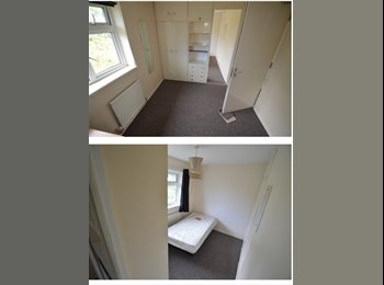 EasyRoommate UK - ROOM TO RENT IN HATFIELD DOUBLE ROOM £350, Hatfield - £350 pcm