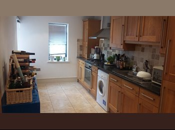 EasyRoommate UK - Great double room near Tooting Broadway/Colliers Wood, Tooting - £600 pcm