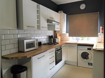 EasyRoommate UK - SHORT TERM LET AVAILABLE HEART OF ECCLESALL ROAD, Sharrow - £400 pcm