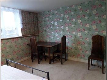 EasyRoommate UK - Large double room, Monmore Green - £350 pcm