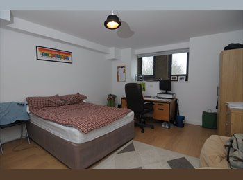 EasyRoommate UK - Double En Suite Room in New Development , Crookesmoor - £370 pcm