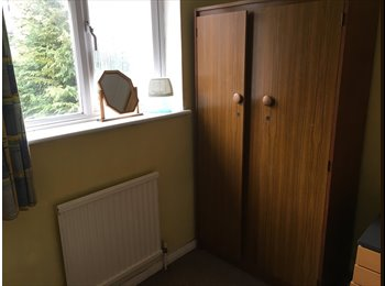 EasyRoommate UK - SPACIOUS SINGLE ROOM, Bracknell - £390 pcm