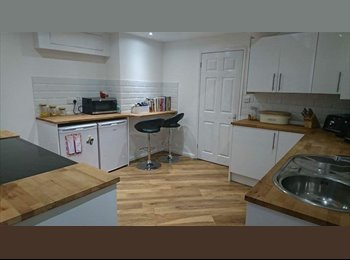 EasyRoommate UK - Double room  / shared house- available now.  £450 p/m inc bills, Sandy - £450 pcm