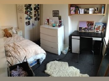 EasyRoommate UK - Room available in a 4 bedroom house, The Park - £440 pcm