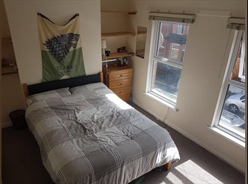 EasyRoommate UK - Double Room Sranmillis. Clean Tidy £240pm, Belfast - £240 pcm