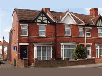 EasyRoommate UK - Double rooms with en-suite avaialble, Bridgwater - £498 pcm