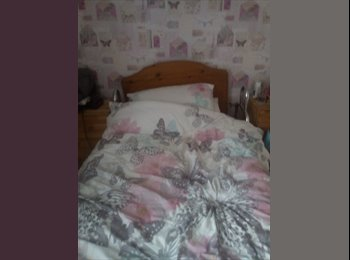 EasyRoommate UK - Room to rent in a 2 bedroom bungalow, Belfast - £450 pcm