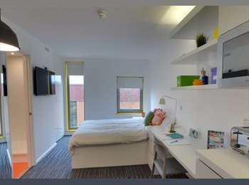EasyRoommate UK - Luxury Student Room Available , Guildford - £860 pcm