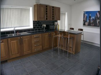 EasyRoommate UK - Beautiful 3 bedroom student house , Cottingham - £75 pcm