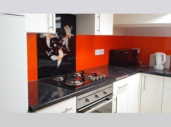 EasyRoommate UK - Large Victorian House close to the city centre, Carlisle - £370 pcm