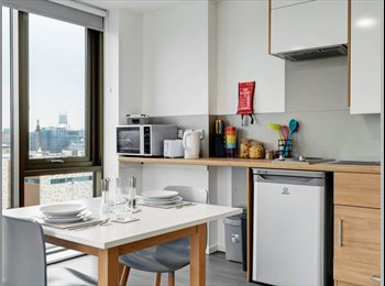 EasyRoommate UK - Take over lease of the Studio , Liverpool - £450 pcm