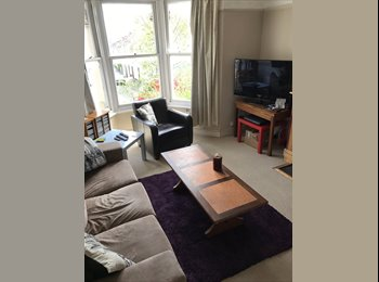 EasyRoommate UK - 1 LARGE double room in very nice, tidy flat, Horfield - £450 pcm