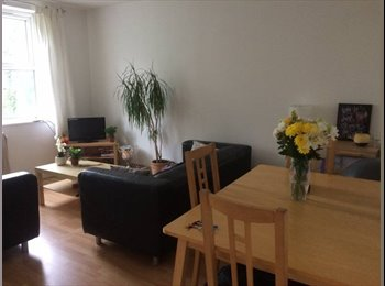 EasyRoommate UK - Double room with adjacent single included , Chorlton-cum-Hardy - £437 pcm