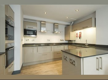 EasyRoommate UK - Newly Refurbed Apartment in Notts City Centre, Hockley - £540 pcm