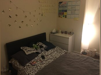 EasyRoommate UK - Renting Room near Coventry University, Stoke Aldermoor - £300 pcm