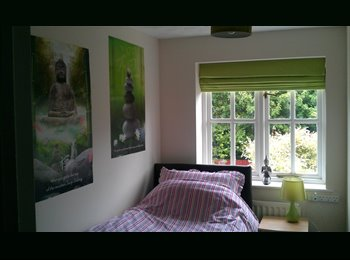 EasyRoommate UK - Clean single room in friendly household Warfield, Bracknell - £360 pcm