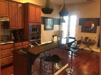 EasyRoommate US - Spacious Private Room 5 mins from NRG Stadium, Washington Ave./ Memorial Park - $850 /mo