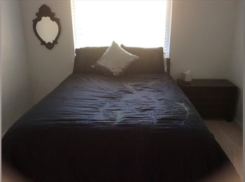 EasyRoommate US - Nice room in Plano , Plano - $625 pm
