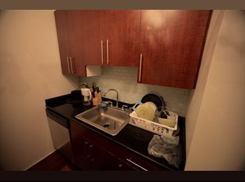 EasyRoommate US - ROOM IN FINANCIAL DISTRICT , Financial District - $1,800 /mo