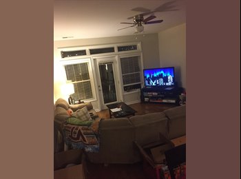 EasyRoommate US - Come live in downtown Norfolk!!, Norfolk - $700 /mo