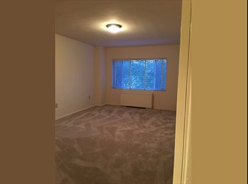 EasyRoommate US - 1 Bedroom available in Single family 2 BHK apartment at Arlington, VA, Columbia Heights - $799 pm