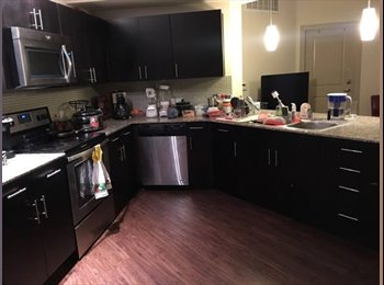 EasyRoommate US - Shared room for rent at UH, Gulfgate/Pine Valley - $670 pm