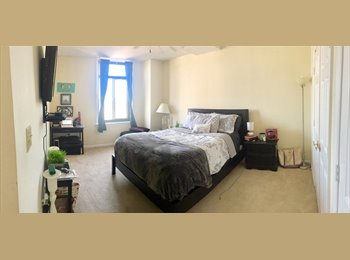 EasyRoommate US - Master Bedroom in 3 bed/3 bath Courthouse/Clarendon-- RIDICULOUS View, Court House - $1,366 pm