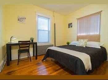 EasyRoommate US - Personable Room Available in a 3 bedroom / 1 bath/ + living room, Cambridge - $1,390 pm